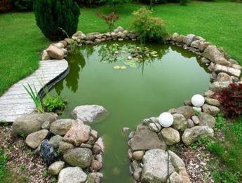 Une mare dans son jardin pour développer la biodiversité