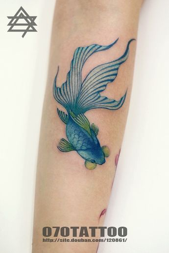 9b11e863c0d3e Betta fish symbolize unlikely warriors; they are small and
