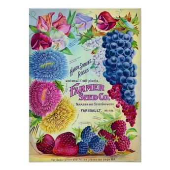 Farmers Seed Company vintage advertisement showing a colorful flower and fruit plant catalog cover from Minnesota.