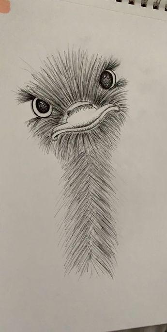 little ostrich friend :) #art #animalart #drawing #sketch - #animalart #Art #Drawing #friend #ostrich #Sketch #zeichnung