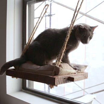 DIY Cat Window Perch