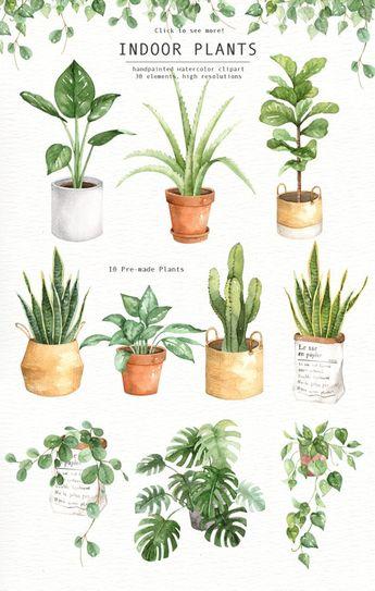 Indoor Plants Watercolor clipart, Watercolour Leaves, Watercolor flower, Leaf clipart, Wedding Clip Art, wedding invitation, wreath, green