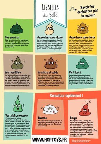 Infographies : les différentes étapes de bébé