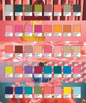 Pantone 2019 Color Palettes.  Images via Pantone and Adobe Stock.