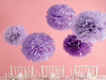 Purple Pom-poms