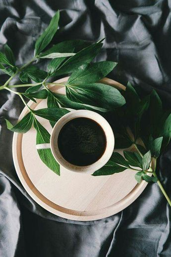 Good Morning. #kaffeeliebe #greens