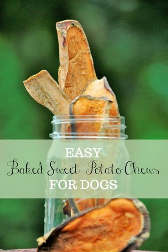 Easy To Make Sweet Potato Dog Chews