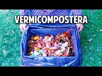 Como hacer una vermicompostera con una caja de cartón. ASI DE GRATIS  - YouTube