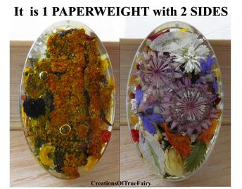 Two Sides Unique Paperweight Real Flowers Tree Bark Anniversary Gift For Women Birthday Wife Lady