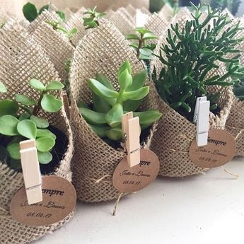 Such a cute idea for wedding favours! Grow your own succulents in the lead up to the wedding, wrap in hessian & clip on a little name…