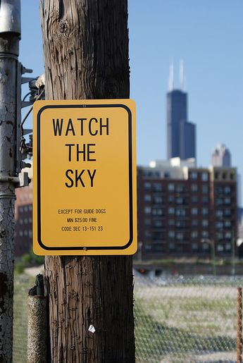Watch The Sky ?? What does it mean? And why does my guide dog not have to watch the sky?