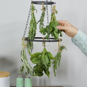 Make an Herb Drying Rack in 4 Steps
