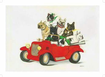 Bulldogs in car
