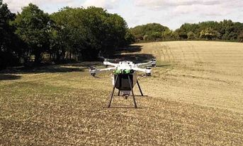 Tree-Planting Drones Have Successfully Planted Thousands of Saplings – and They're About to Plant More