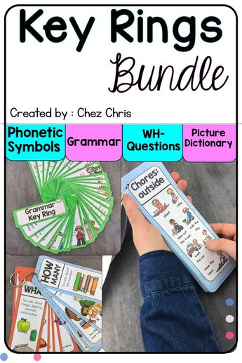 Grammar, WH-questions, Phonetics and Picture Dictionary Key Ring BUNDLE