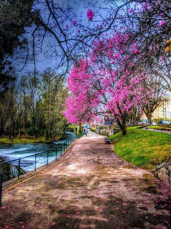 Boa noite :D As margens do rio Vez em  Arcos de  a meio da tarde cinzenta mas sempre bela de hoje