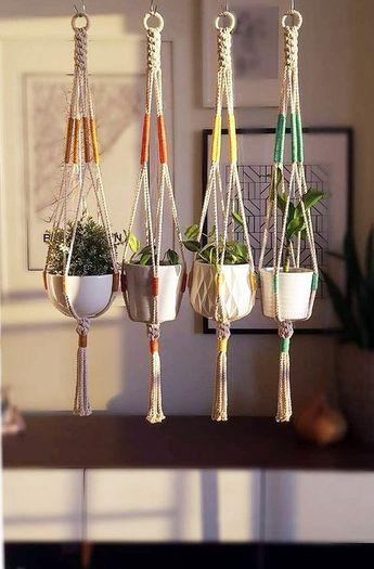 hang plants indoors 7211486846 #Hangingplantsdiyoutdoor