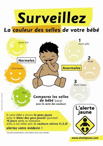 L'alerte jaune revisitée pour le carnet de santé Nouvelle Calédonie 2013 ! secretariat@amfe.fr #enfant #santé