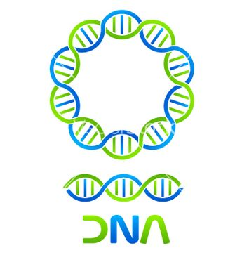 Dna strand in circle and seamless string vector