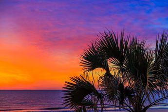 Tropical #Sunrise Kenneth Keifer. #palm tree