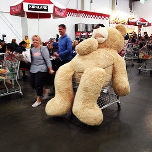 The most enormous teddy bear to ever roam the planet.