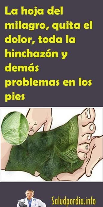 La hoja del milagro, quita el dolor, toda la hinchazón y demás problemas en los pies. #hojadelmilagro #quitardolor #hinchazón #pies