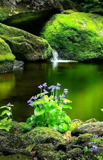 моря и реки - #beautiful #и #моря #реки