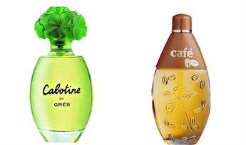 Os 10 Melhores Perfumes Femininos Bons e Baratos | We Fashion Trends