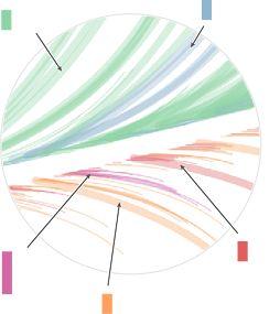 """periscopic - """"one angry bird"""" : Mise en forme de données (analyse discours politiques) sous forme d'une plume"""