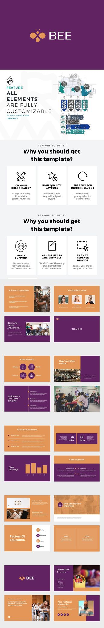 Bee Education PowerPoint Template