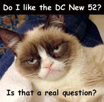 new grumpy cat pictures   Grumpy Cat on the DC reboot