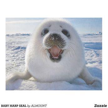 Custom Throw Blanket - Baby Harp Seal Fleece Blanket - Zazzle...