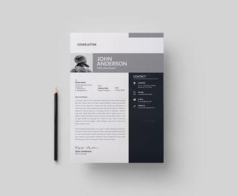 Venice Professional Resume Design Template - Graphic Templates