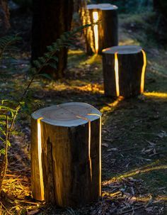 Log Lamp: Lamps Made From Salvaged Logs