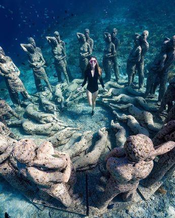 Explore the underwater beauty of Gili Meno in West Nusa Tenggara, #Indonesia  Photo by: IG @adamfreediver