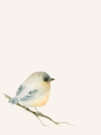 Watercolor Artwork Print Tiny Lost Bird