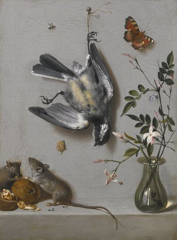 Jean-Baptiste Oudry PARIS 1686 - 1755 BEAUVAIS STILL LIFE OF A SONGBIRD AND BUTTERFLIES, WITH MICE EATING WALNUTS AND FLOWERS IN A VASE ON A STONE LEDGE