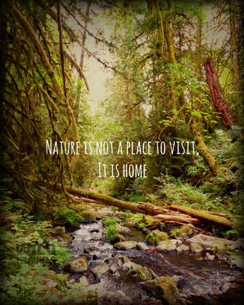 Forest Landscape Nature Photography, Nature Quote Prints, West Coast Wall Art, Landscape Photo Rustic Cabin Decor,Camping Decor Nature Gifts