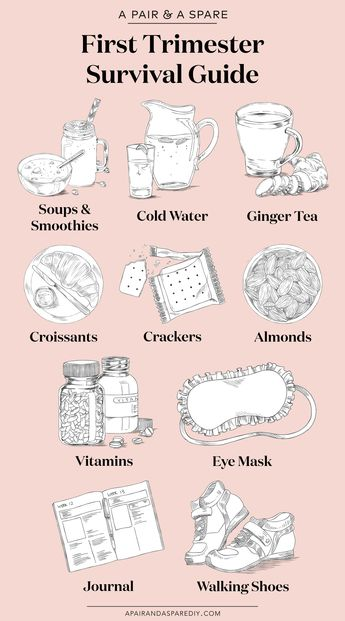 My First Trimester Survival Guide
