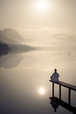 A quiet mind is all you need. All else will happen rightly, once your mind is quiet. As the sun on rising makes the world active, so does self-awareness affect changes in the mind. In the light of calm and steady self-awareness, inner energies wake up and work miracles without any effort on your part. ~Sri Nisargadatta Maharaj