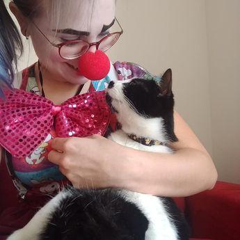 Charles em dois momentos 🐈 Foto 1: O que é isso no teu nariz humana? Foto 2: Sério, pra que isso Verônica!? #tbt . . . . . . #tbt❤️ #tbt🔙 #palhaço #narizvermelho #narizdepalhaço #charlesthecat #gatozoeiro #catlovers #cat #crazycatlady #fantasias #brincadeira #palhaçoterapia #gatos #humordegato #clownsterapeuticos #clown #colorfull #ilovemypet #petlover #love