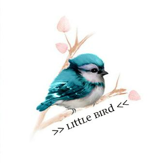 My mom's nickname for me since I was a small child is, Little Bird <3