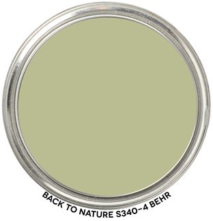 Expert Review of BEHR's Color of the Year 2020 Back to Nature S340-4