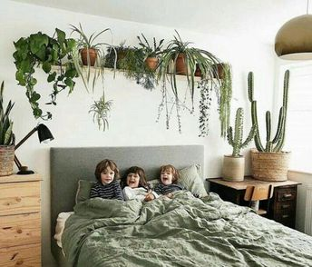 Such a unique way to frame your sleeping space. . thnx ♥ @shelbyjeffels | Decor in 2019 | Pinterest | Indoor plants, Indoor and Bedroom | Sleeping Plant | Sleeping Plant | Herbs Of The World. #ourlives #Accessories #bedroomplants