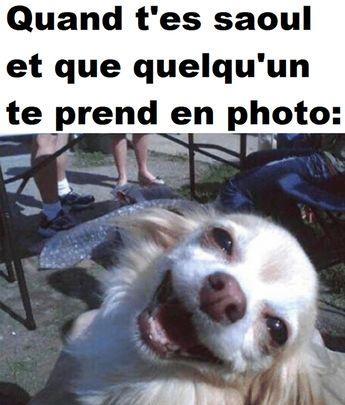Quand t'es saoul et que quelqu'un te prend en photo