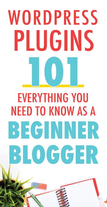 Wordpress Plugins 101 Everything You Need to Know as a Beginner Blogger