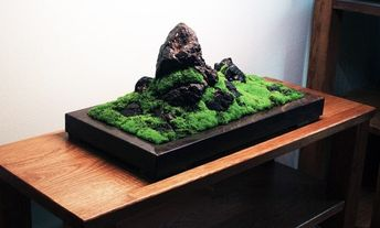 Koke Bonkei - miniature landscape garden arranged on a tray with moss and stones and sand.