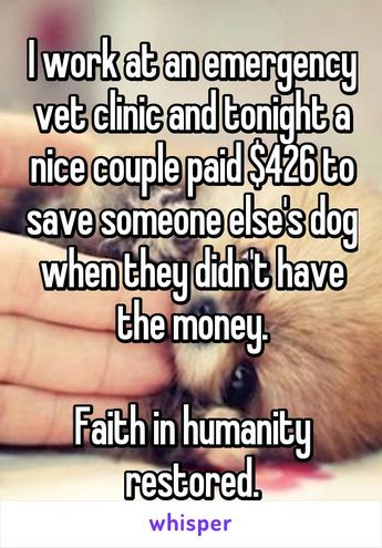 I work at an emergency vet clinic and tonight a nice couple paid $426 to save someone else's dog when they didn't have the money.  Faith in humanity restored.