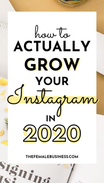 How to Beat the Instagram Algorithm in 2020 - The Female Business