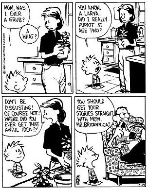  Calvin's Dad is hilarious